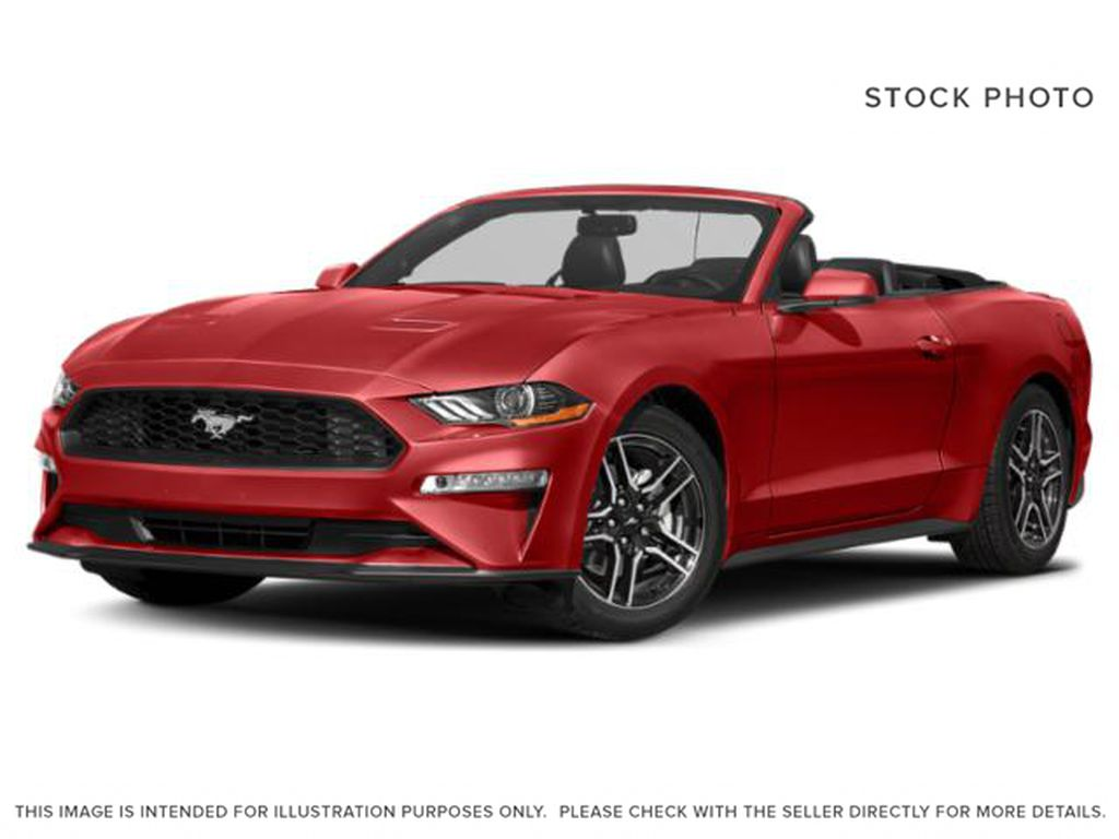 Red[Race Red] 2021 Ford Mustang