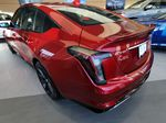 Red[Infrared Tintcoat] 2021 Cadillac CT5 Left Rear Corner Photo in Edmonton AB