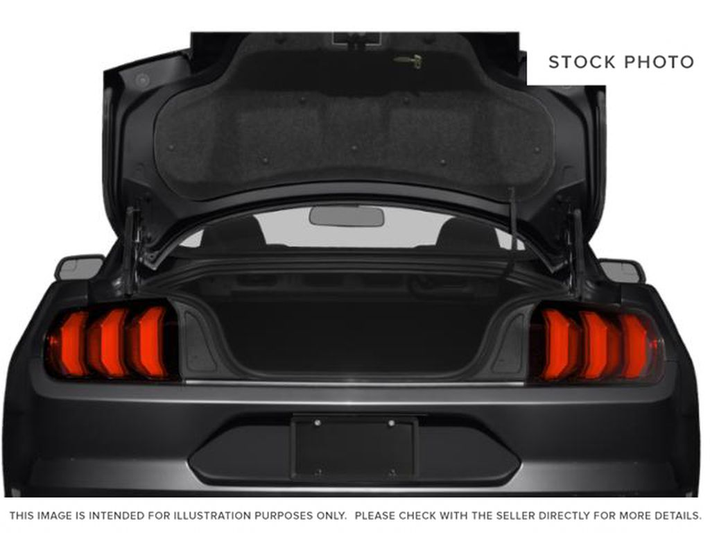 Blue[Antimatter Blue Metallic] 2021 Ford Mustang Trunk / Cargo Area Photo in Dartmouth NS