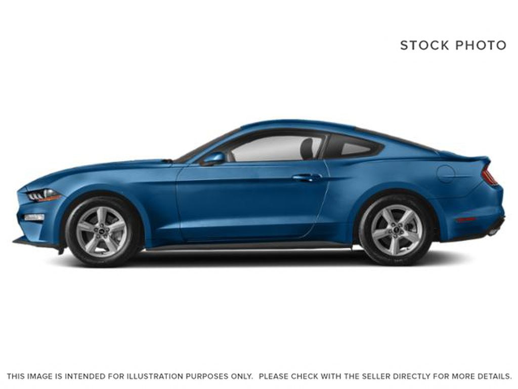 Blue[Antimatter Blue Metallic] 2021 Ford Mustang Left Side Photo in Dartmouth NS
