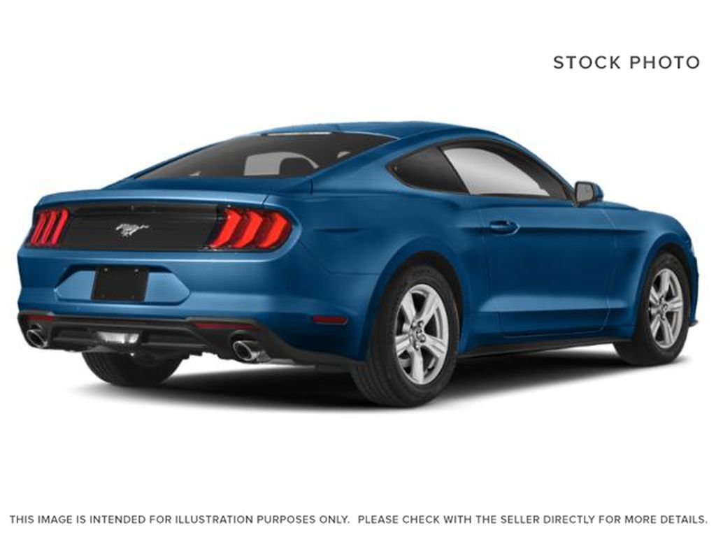 Blue[Antimatter Blue Metallic] 2021 Ford Mustang Right Rear Corner Photo in Dartmouth NS