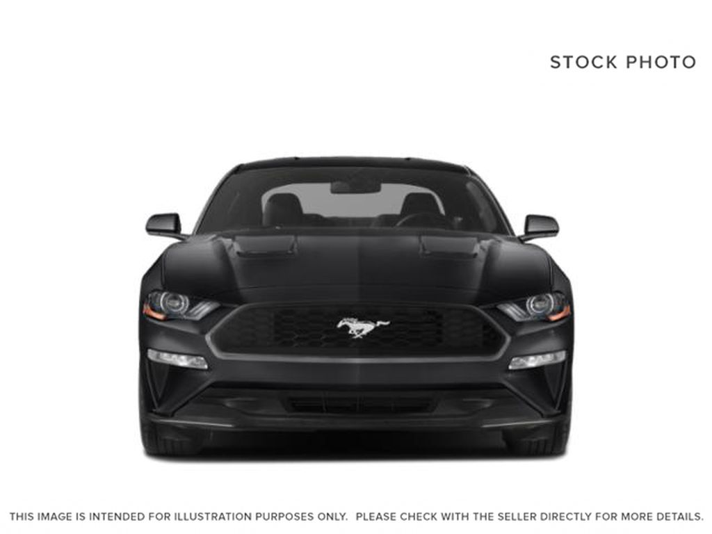 Blue[Antimatter Blue Metallic] 2021 Ford Mustang Front Vehicle Photo in Dartmouth NS
