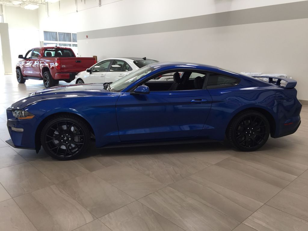 Blue[Kona Blue] 2018 Ford Mustang Ecoboost Left Side Photo in Sherwood Park AB