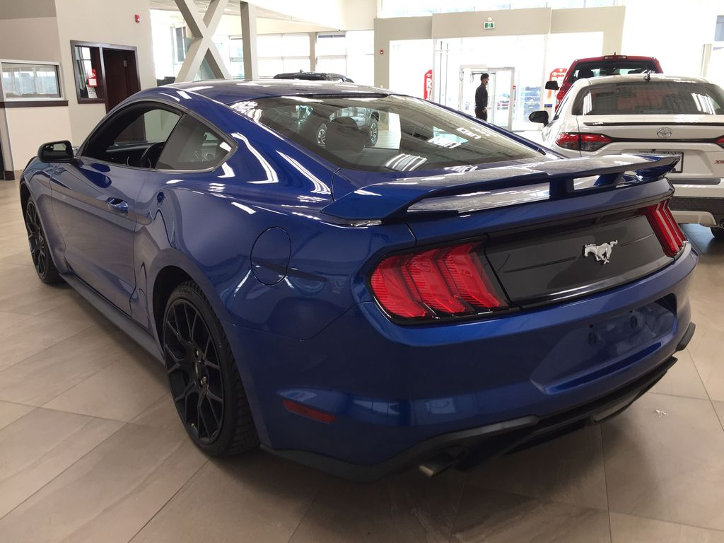 Blue[Kona Blue] 2018 Ford Mustang Ecoboost Left Rear Corner Photo in Sherwood Park AB