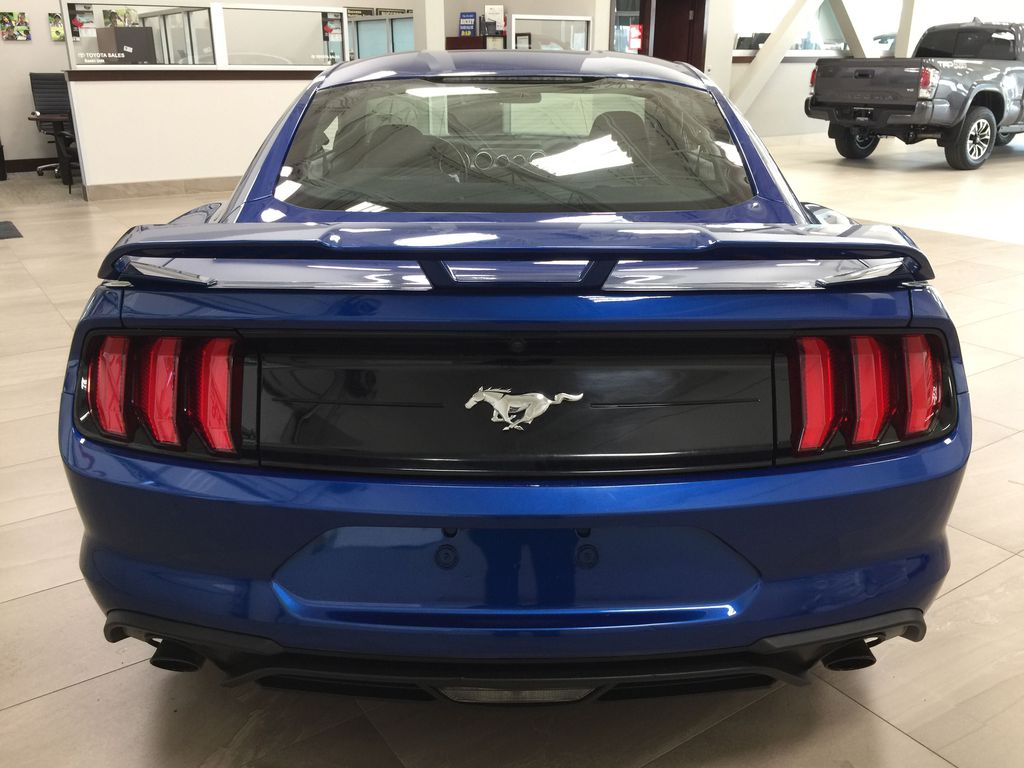 Blue[Kona Blue] 2018 Ford Mustang Ecoboost Rear of Vehicle Photo in Sherwood Park AB