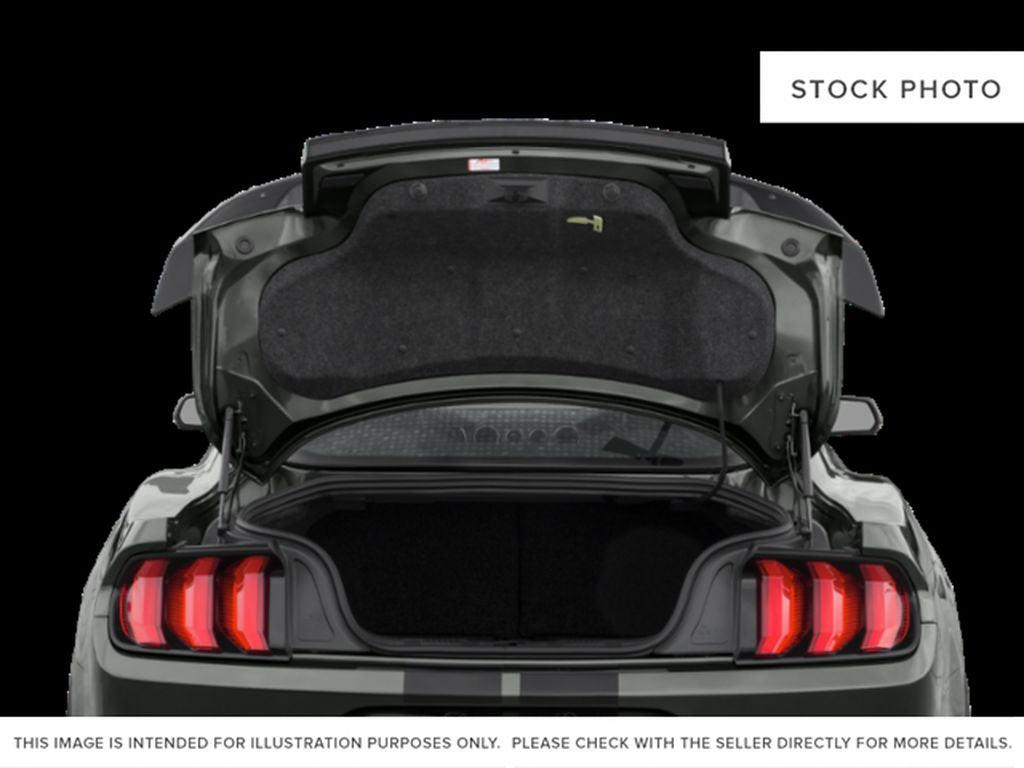 Black[Shadow Black] 2021 Ford Mustang Trunk / Cargo Area Photo in Dartmouth NS