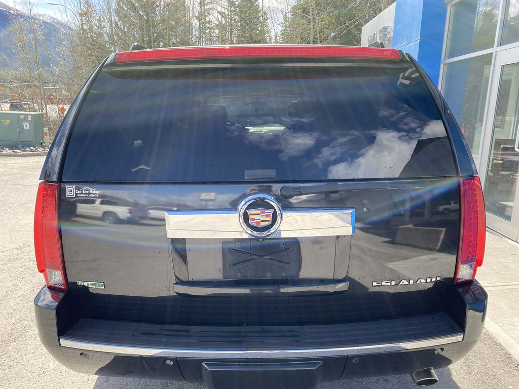 Black Ice Premium paint 2010 Cadillac Escalade ESV Rear of Vehicle Photo in Canmore AB