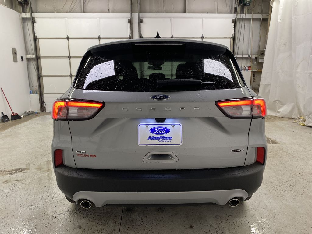 Silver[Iconic Silver Metallic] 2021 Ford Escape Rear of Vehicle Photo in Dartmouth NS