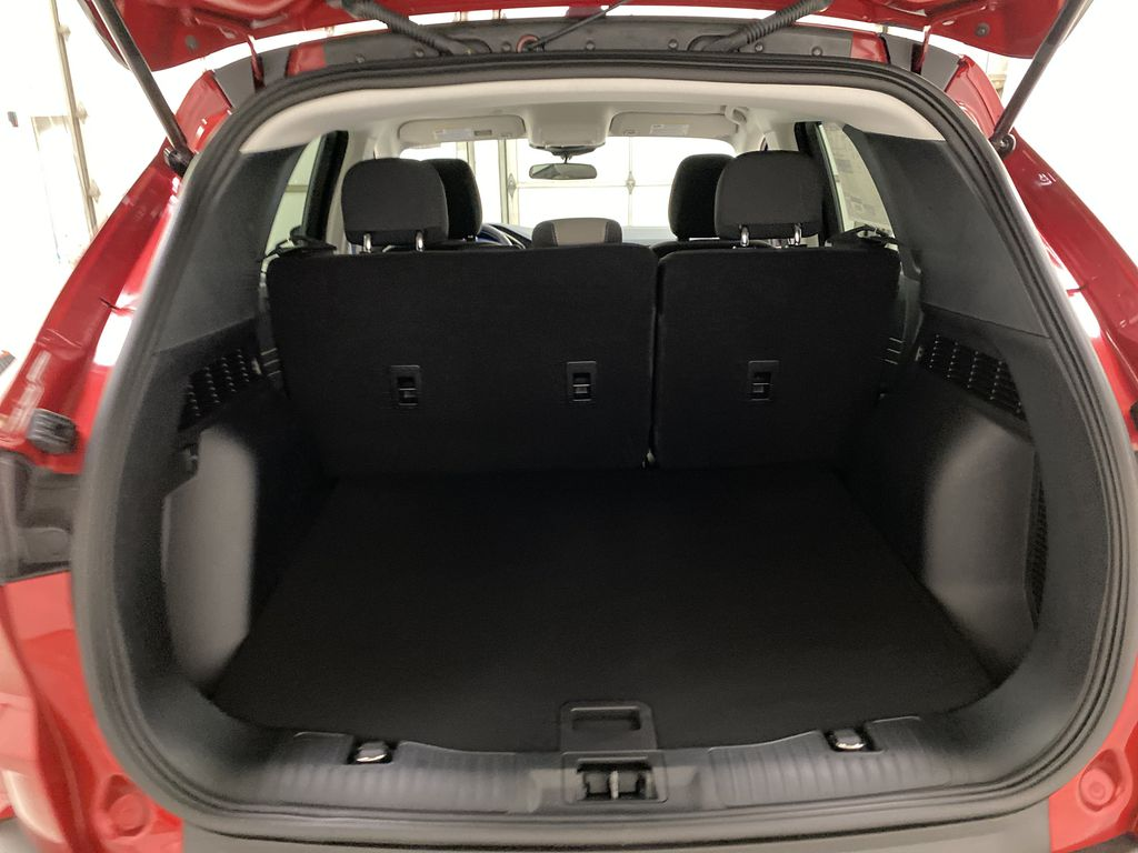 Red[Rapid Red Metallic Tinted Clearcoat] 2021 Ford Escape Trunk / Cargo Area Photo in Dartmouth NS
