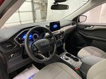 Red[Rapid Red Metallic Tinted Clearcoat] 2021 Ford Escape Strng Wheel/Dash Photo: Frm Rear in Dartmouth NS