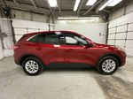 Red[Rapid Red Metallic Tinted Clearcoat] 2021 Ford Escape Right Side Photo in Dartmouth NS