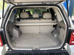 Silver[Silver Metallic] 2008 Ford Escape XLT Trunk / Cargo Area Photo in Canmore AB