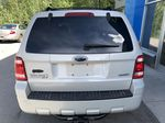 Silver[Silver Metallic] 2008 Ford Escape XLT Rear of Vehicle Photo in Canmore AB