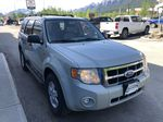 Silver[Silver Metallic] 2008 Ford Escape XLT Primary Photo in Canmore AB