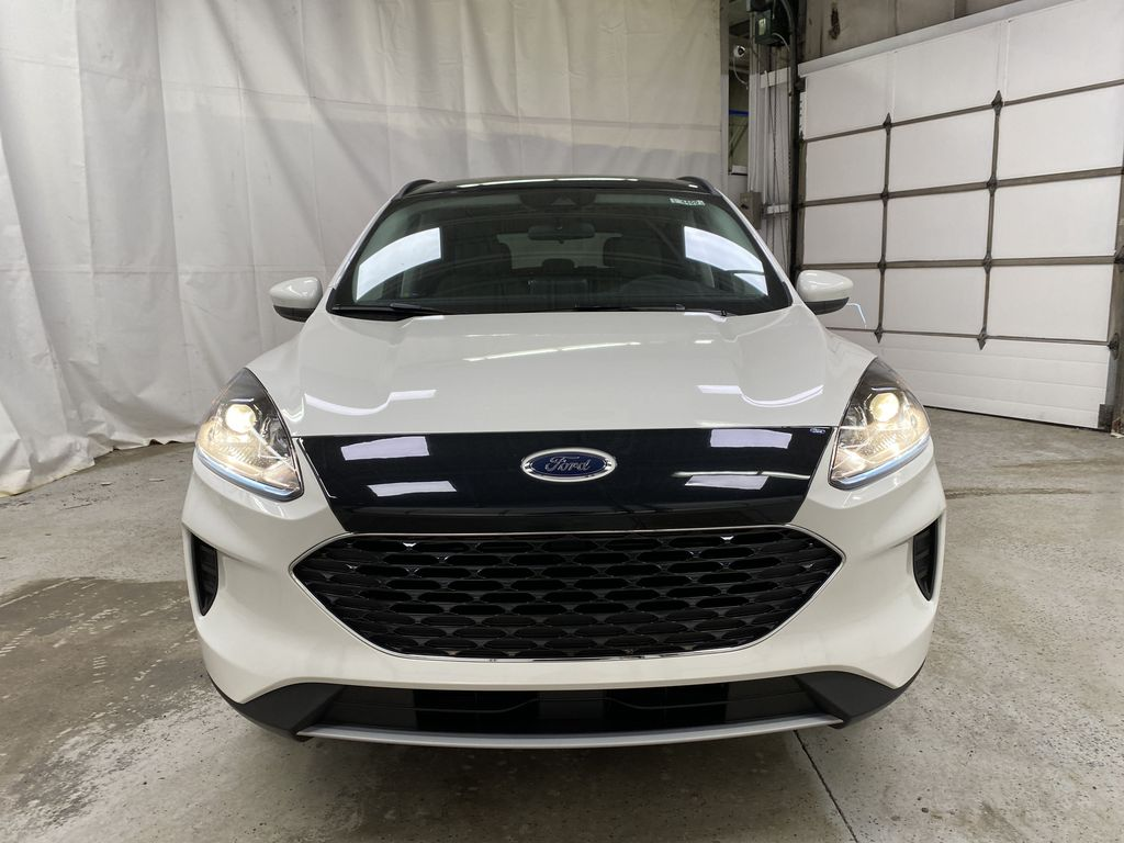 White[Oxford White] 2021 Ford Escape Front Vehicle Photo in Dartmouth NS