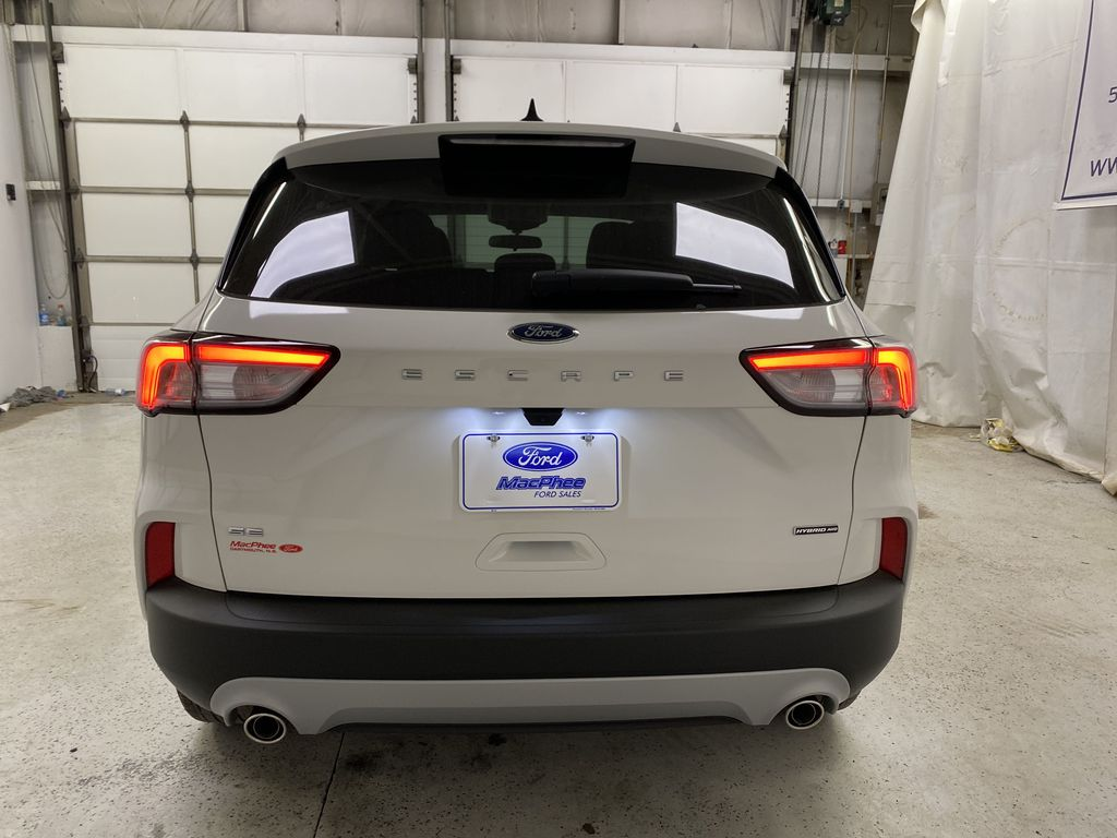 White[Oxford White] 2021 Ford Escape Rear of Vehicle Photo in Dartmouth NS