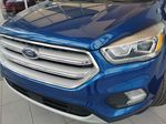 Blue[Lightning Blue] 2019 Ford Escape Left Front Head Light / Bumper and Grill in Edmonton AB
