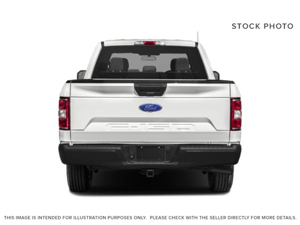 Gray[Abyss Grey] 2019 Ford F-150 Rear of Vehicle Photo in Fort Macleod AB