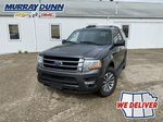 2017 Ford Expedition Primary Photo in Nipawin SK