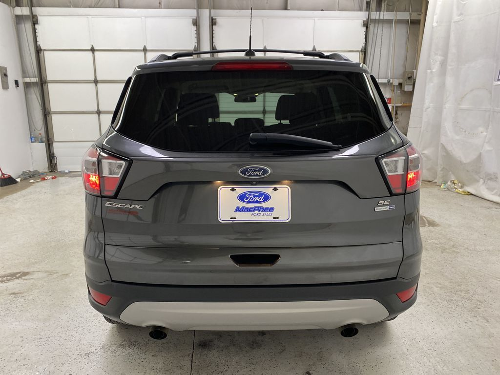 GRAY 2017 Ford Escape Rear of Vehicle Photo in Dartmouth NS