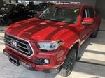 Red 2020 Toyota Tacoma 4WD Double Cab SR5 Left Side Rear Seat  Photo in Edmonton AB