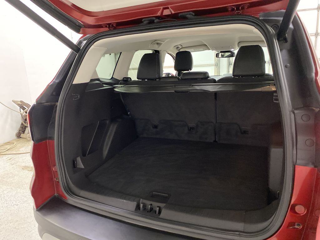 Red[Ruby Red Metallic Tinted Clearcoat] 2019 Ford Escape Trunk / Cargo Area Photo in Dartmouth NS