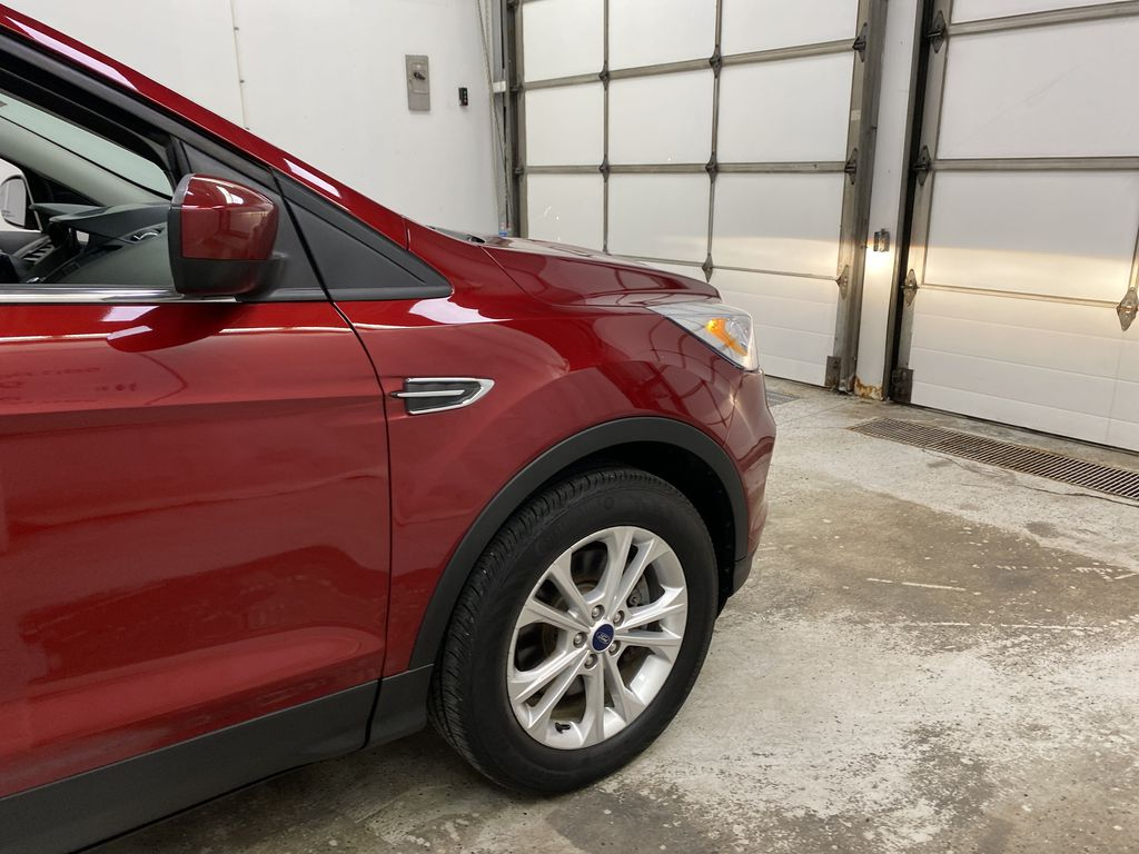 Red[Ruby Red Metallic Tinted Clearcoat] 2019 Ford Escape Right Front Corner Photo in Dartmouth NS