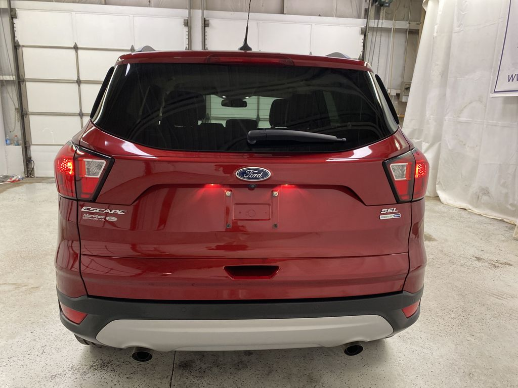 Red[Ruby Red Metallic Tinted Clearcoat] 2019 Ford Escape Rear of Vehicle Photo in Dartmouth NS