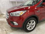 Red[Ruby Red Metallic Tinted Clearcoat] 2019 Ford Escape Left Front Corner Photo in Dartmouth NS