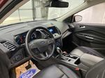 Red[Ruby Red Metallic Tinted Clearcoat] 2019 Ford Escape Strng Wheel/Dash Photo: Frm Rear in Dartmouth NS