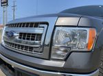 Gray[Sterling Grey Metallic] 2013 Ford F-150 Left Front Head Light / Bumper and Grill in Edmonton AB