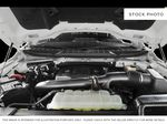 Red[Race Red] 2021 Ford F-150 Engine Compartment Photo in Dartmouth NS