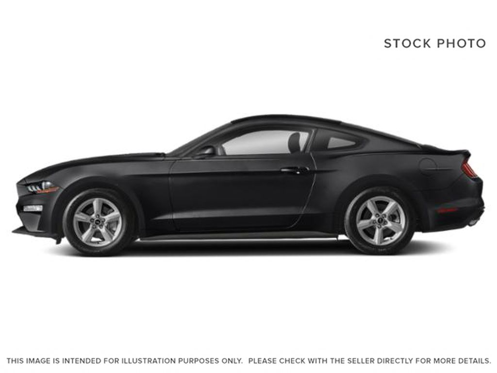 Black[Shadow Black] 2019 Ford Mustang Left Side Photo in Dartmouth NS