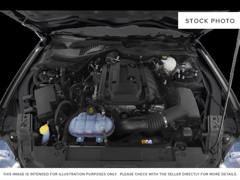 Black[Shadow Black] 2019 Ford Mustang Engine Compartment Photo in Dartmouth NS