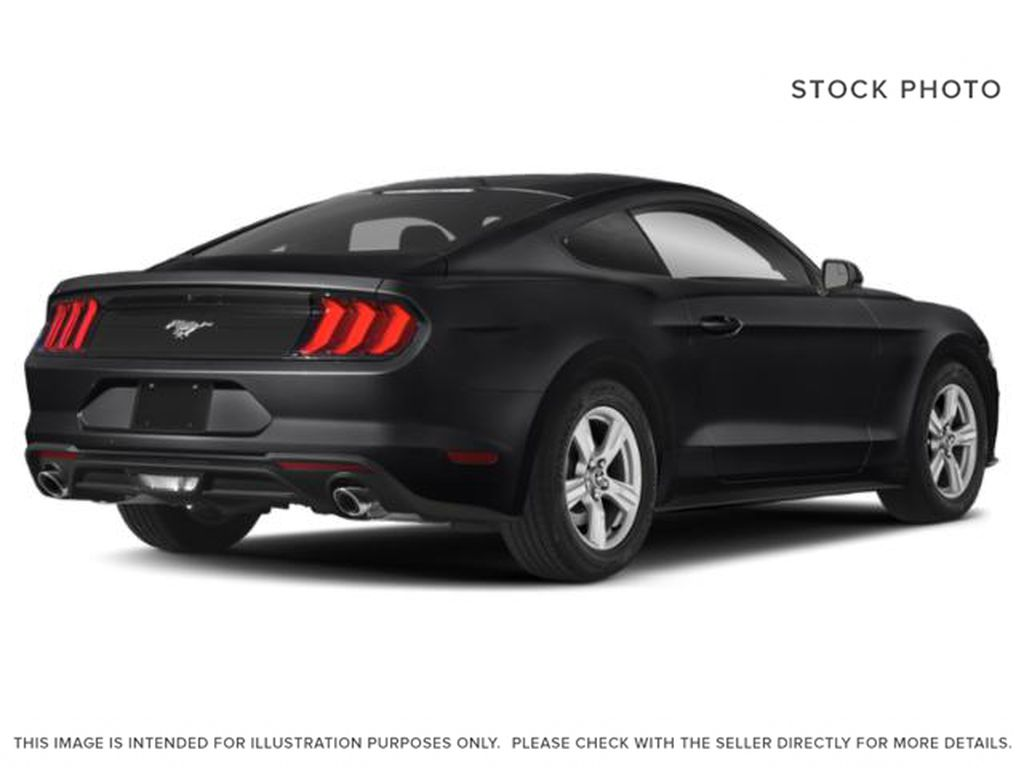 Black[Shadow Black] 2019 Ford Mustang Right Rear Corner Photo in Dartmouth NS