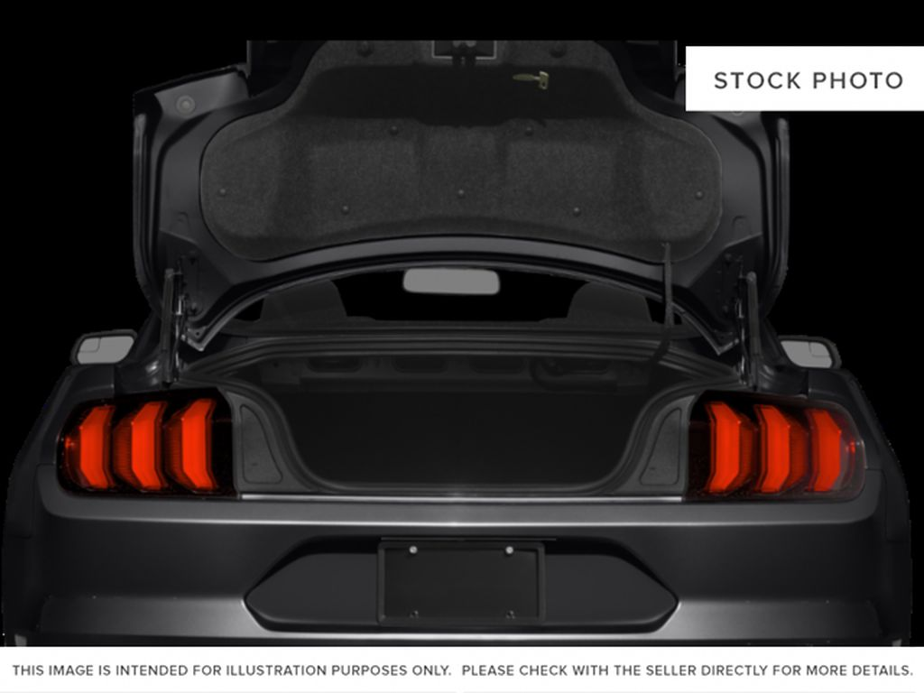 Black[Shadow Black] 2019 Ford Mustang Trunk / Cargo Area Photo in Dartmouth NS