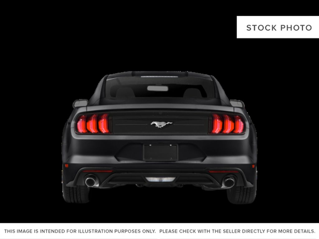 Black[Shadow Black] 2019 Ford Mustang Rear of Vehicle Photo in Dartmouth NS