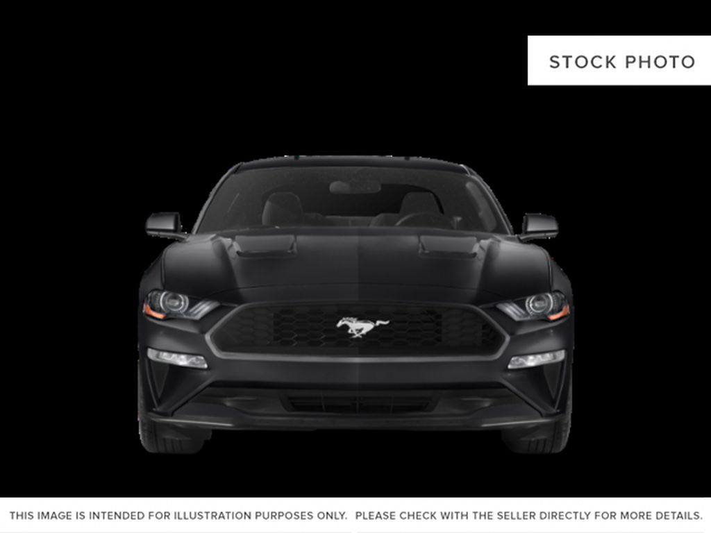Black[Shadow Black] 2019 Ford Mustang Front Vehicle Photo in Dartmouth NS