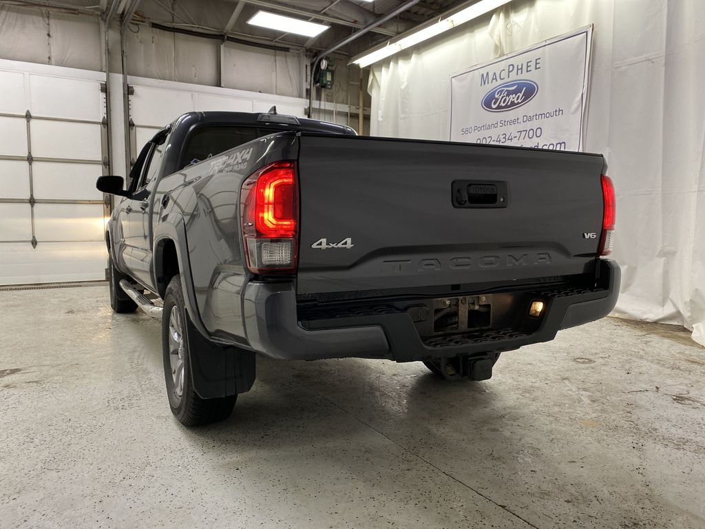 Gray[Cement Grey Metallic] 2019 Toyota Tacoma Rear of Vehicle Photo in Dartmouth NS