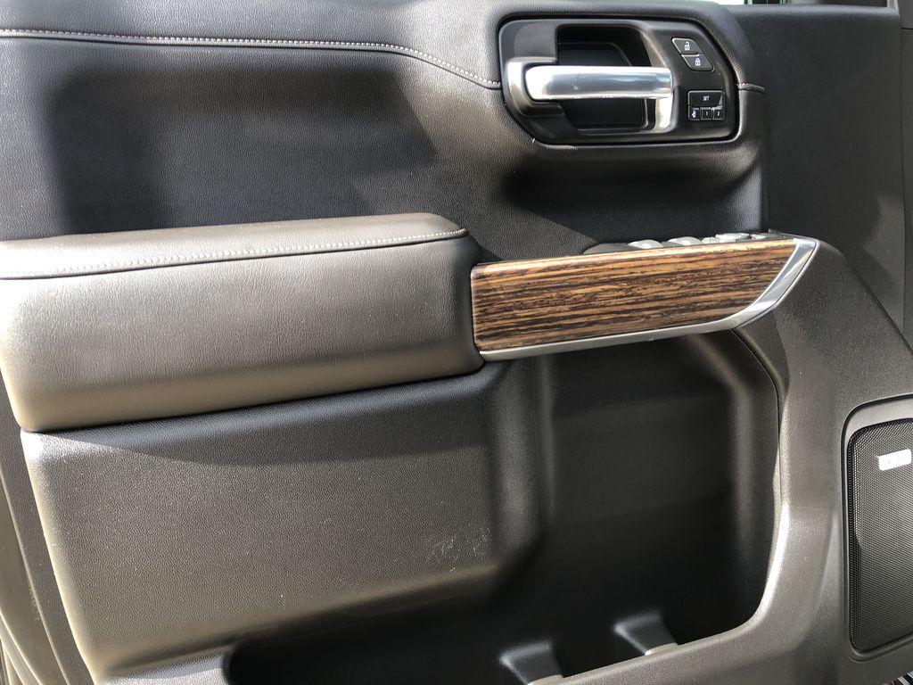 Black[Black] 2019 Chevrolet Silverado 1500 Left Front Interior Door Panel Photo in Edmonton AB