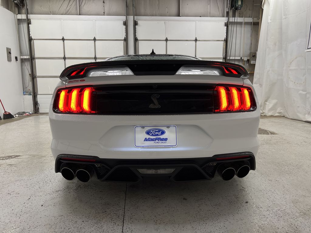 White[Oxford White] 2020 Ford Mustang Rear of Vehicle Photo in Dartmouth NS