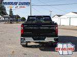 Black[Black] 2021 Chevrolet Silverado 1500 Rear of Vehicle Photo in Nipawin SK