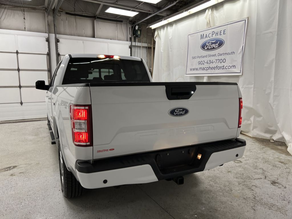 2019 Ford F-150 Rear of Vehicle Photo in Dartmouth NS