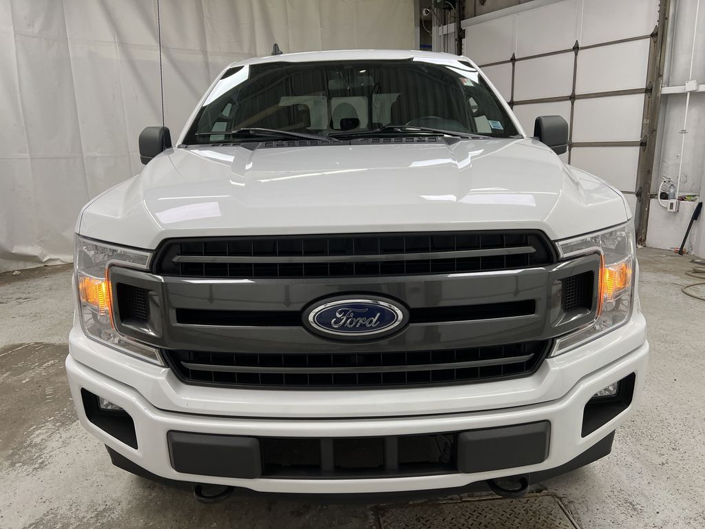 2019 Ford F-150 Front Vehicle Photo in Dartmouth NS
