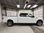 2019 Ford F-150 Right Side Photo in Dartmouth NS