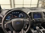 2019 Ford F-150 Steering Wheel and Dash Photo in Dartmouth NS