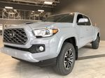 Cement 2021 Toyota Tacoma 4WD Double Cab TRD Sport Left Side Rear Seat  Photo in Edmonton AB